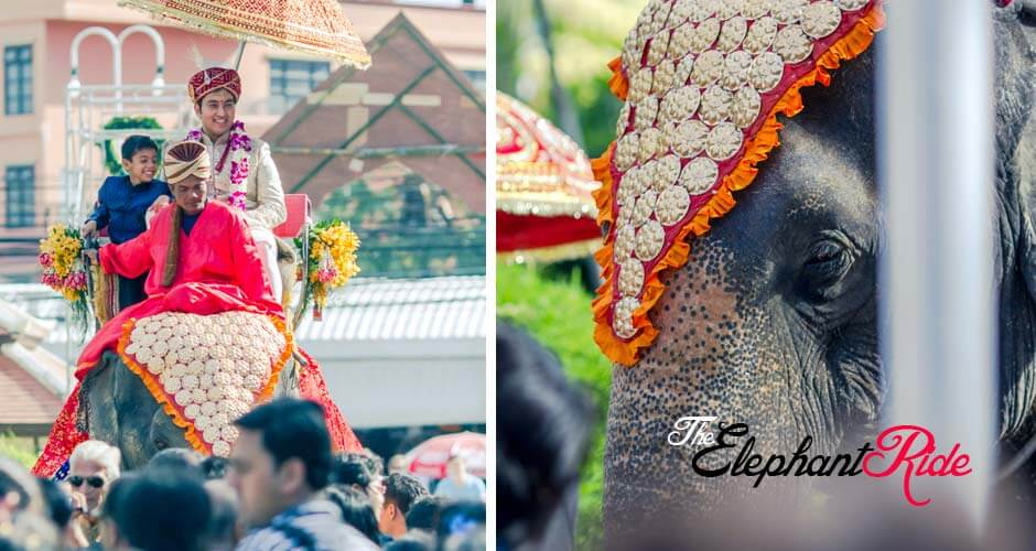 4 top wedding photographers goa