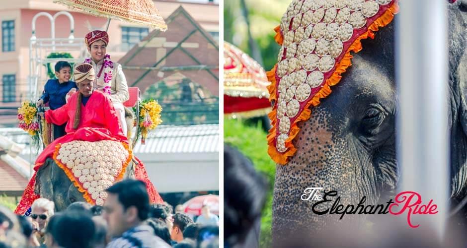 4 top wedding photographers goa